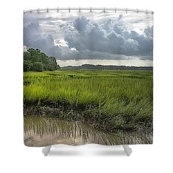 Shower Curtain featuring the photograph Island by Margaret Palmer