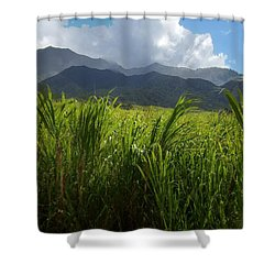 Island Paradise Shower Curtain by David and Lynn Keller