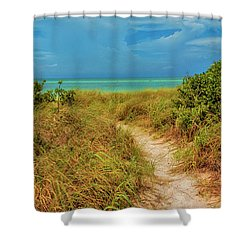Island Path Shower Curtain