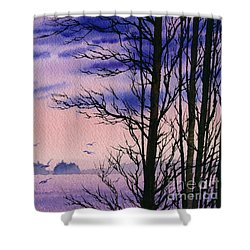 Shower Curtain featuring the painting Island Point by James Williamson