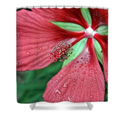 Island Red Shower Curtain by Gina Savage