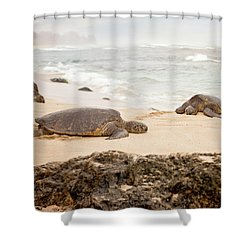Shower Curtain featuring the photograph Island Rest by Heather Applegate