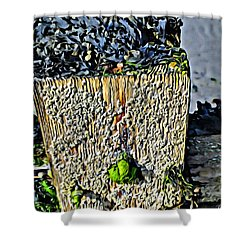 Isle Of Man Low Tide Shower Curtain