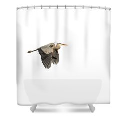 Shower Curtain featuring the photograph Isolated Great Blue Heron 2015-5 by Thomas Young