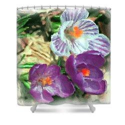 Ist Flowers In The Garden 2010 Shower Curtain by David Lane