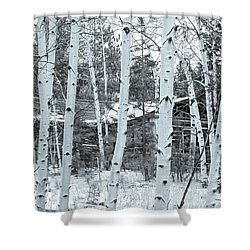 It Elicits A Feeling Of Nostalgia.  Shower Curtain
