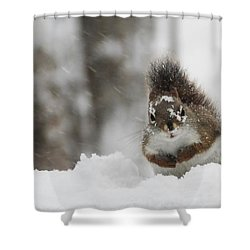 It Is Cold Out Here Shower Curtain