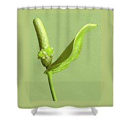 It's A Green Thing Shower Curtain