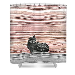 It Is My Place 2 Shower Curtain