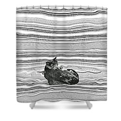 It Is My Place Shower Curtain