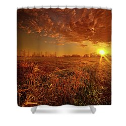 Shower Curtain featuring the photograph It Just Is by Phil Koch