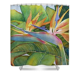It Takes Two Shower Curtain by Judy Mercer