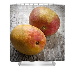 It Takes Two To Mango Shower Curtain by Elena Elisseeva