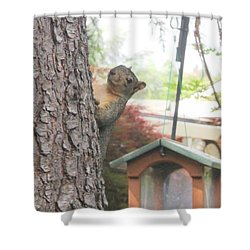 Shower Curtain featuring the photograph It Was Not Me I Tell Yuh by Marie Neder