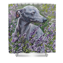 Shower Curtain featuring the painting  Italian Greyhound In Flowers by Lee Ann Shepard