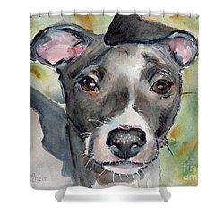 Italian Greyhound Watercolor Shower Curtain