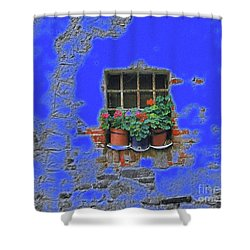 Italian Wallflowers Shower Curtain