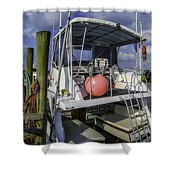 It's A Beautiful Day Shower Curtain by David Smith