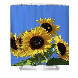 It's A Blue Sky Day Shower Curtain