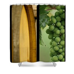 Its A Colourful World Shower Curtain by Lisa Knechtel