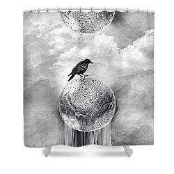 It's A Crow's World Shower Curtain