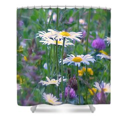 It's A Daisy Kind Of Day Shower Curtain