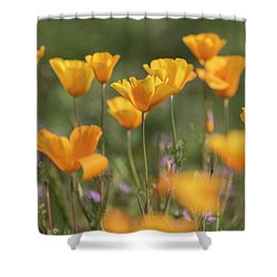 Shower Curtain featuring the photograph It's A Poppy Thing  by Saija Lehtonen