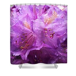 It's A Rainy Day Shower Curtain by Gabriella Weninger - David
