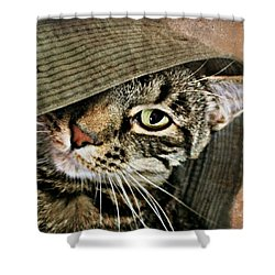 It's All About Me Shower Curtain by Kathy M Krause