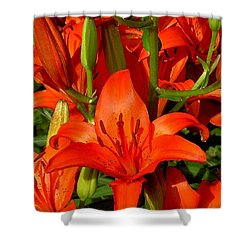 It's All About Red Shower Curtain