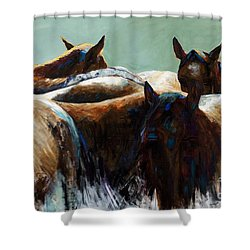 Its All About The Brush Stroke Shower Curtain by Frances Marino
