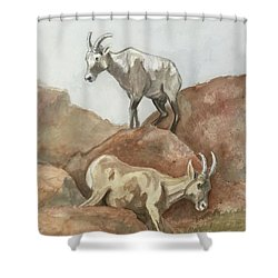 Its All Downhill Shower Curtain