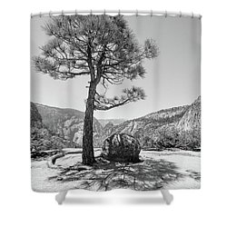 It's Between Them Shower Curtain by Ryan Weddle