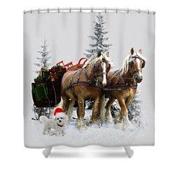 A Christmas Wish Shower Curtain