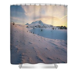 It's Not Spring Yet Shower Curtain by Ryan Manuel