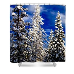 Its Now Crystal Clear Shower Curtain by Jennifer Lake
