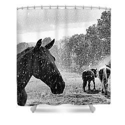 It's Raining Shower Curtain