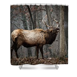 It's Snowing Shower Curtain