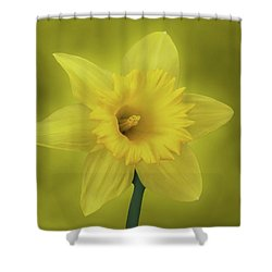 It's Spring Shower Curtain by Sandy Keeton