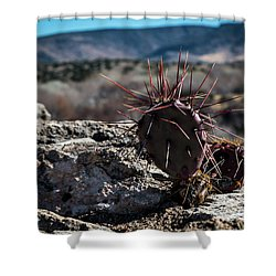 Itty Bitty Prickly Pear Cactus Shower Curtain