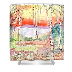 Shower Curtain featuring the painting Ivan's Eve by Renate Nadi Wesley
