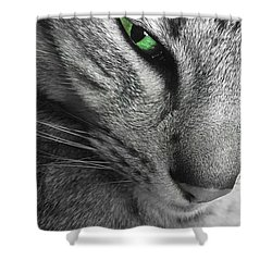 I've Got My Eye On You.  Shower Curtain