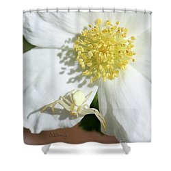 Ivory Huntress Shower Curtain