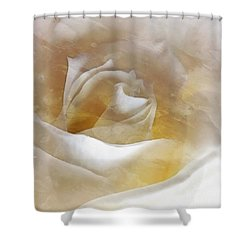 Shower Curtain featuring the photograph Ivory Rose - An Affair To Remember   by Janine Riley