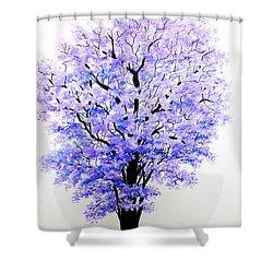 Jacaranda Time Shower Curtain by Karin  Dawn Kelshall- Best