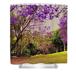 Shower Curtain featuring the photograph Jacarandas 2 by Wallaroo Images