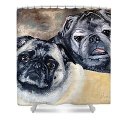 Jack And Bella Shower Curtain