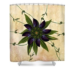 Jackmanii Shower Curtain by Deborah Smith