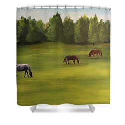 Shower Curtain featuring the painting Jacob's Pasture by Ellen Canfield