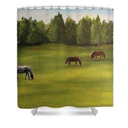 Jacob's Pasture Shower Curtain by Ellen Canfield